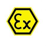 cropped-ex_logo_1.jpg